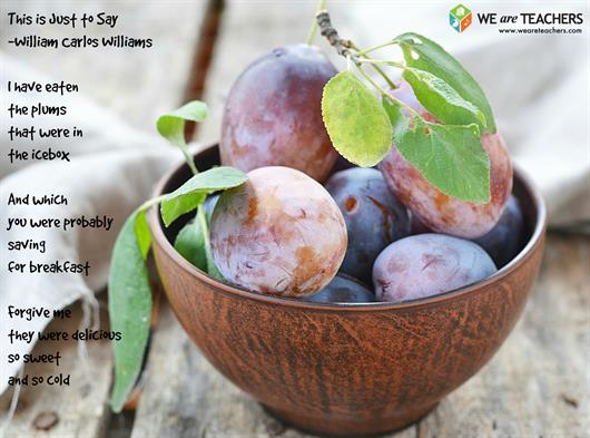 A literary analysis of wild plums