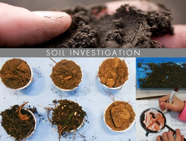 Hands on science using nature works weareteachers for Soil investigation